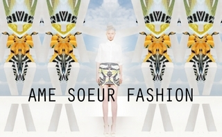 """Ame Soeur Fashion - 2014春夏The story of a bee & and a butterfly"""""""