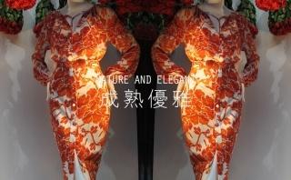 2015春季 Christian Dior零售分析