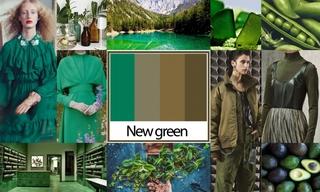 2020初秋色彩:新生綠
